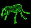 Giant ant F2