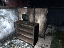 Дневник в разрушенном магазине