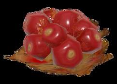 FO76 firecracker berry