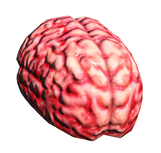 Fo4 brain.png