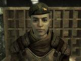 Knight (Fallout: New Vegas)