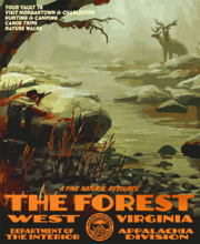 The Forest DOI poster