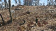 FO4 Sunshine Tidings Co Op Bloodleaf and Random Encounter