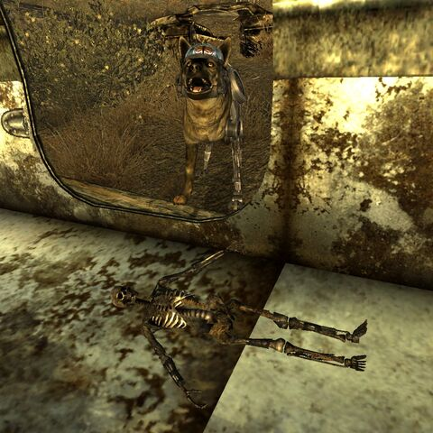 The tiny skeleton in the trailer, compared to <a href=