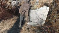 Wildwood cemetery skeleton