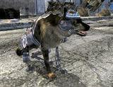 Рекс (Fallout: New Vegas)