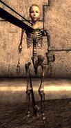 FNVOWB NVDLC03Skeleton