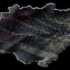 Шкура гекона