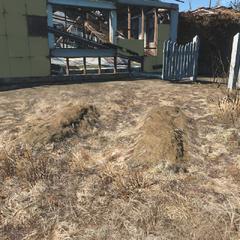 Безіменні могили за будинком №7