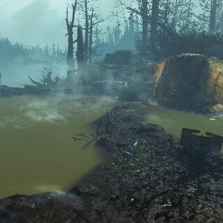В тумані