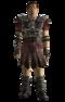 Legion Veteran armor