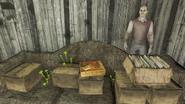 FO4 Abandoned house holodisk3