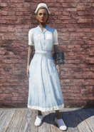 Fallout 76 Asylum Worker Uniform Blue