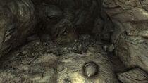 FO3 Vault 106 skeletons