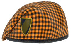 FO76 fasnacht beret
