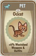 Ocicat card