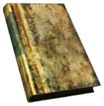 FNV BurnedBook03