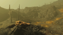 FO4 Grotte rocheuse
