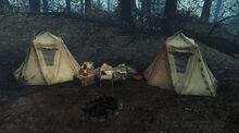 NationalParkCampground-Tents-FarHarbor