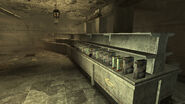 FO3 Gold Ribbon Grocers start
