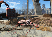FO4 Red widow bloodbug