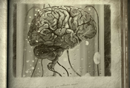 Mózg kalkulatora 1
