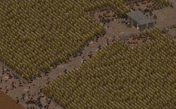 Fo2 Ghost Farm