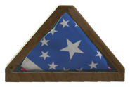 Undamaged American flag