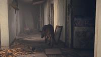 FO4 Trailer 00.58