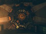 Vault 79