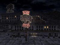 Bison Steve de noche