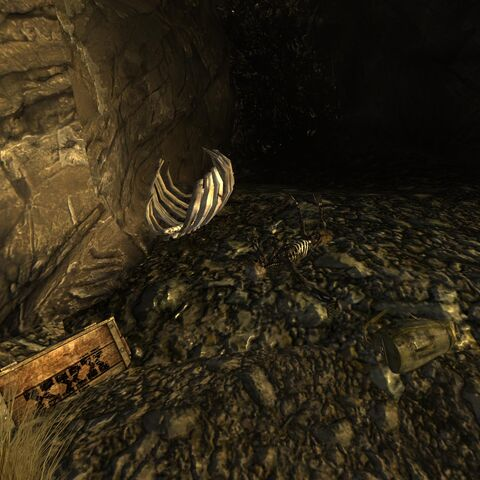 «Магнум» кал. 44, рюкзак пріключенців та ящик з вибухівкою біля скелета
