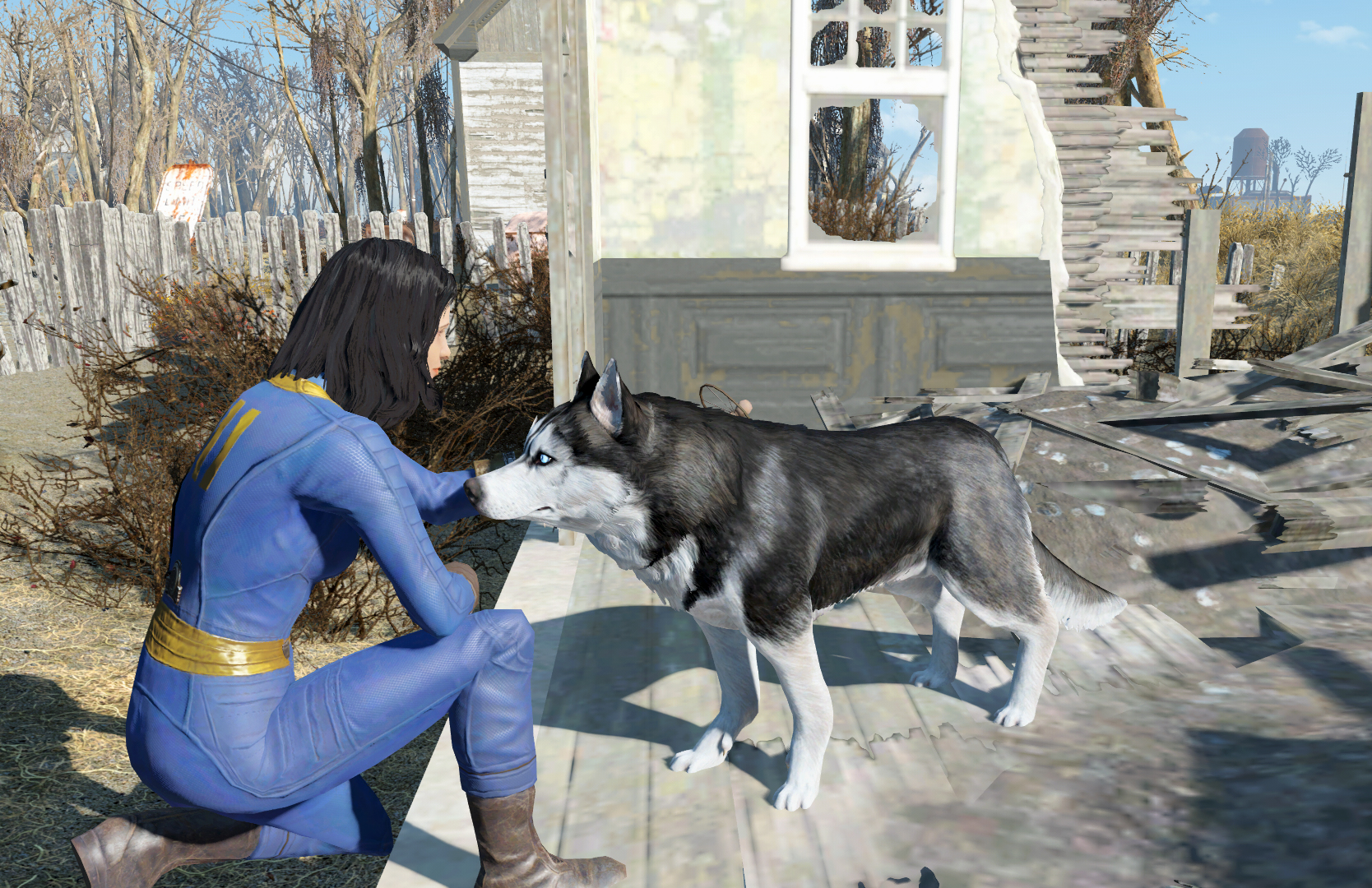 Dog Rescue | Fallout Wiki | FANDOM powered by Wikia