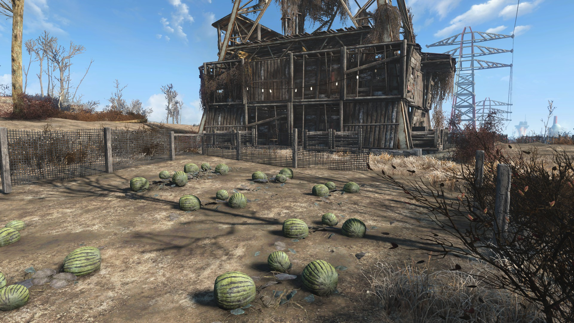 Abernathy farm6