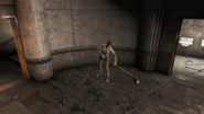 FO4 Hotel worker Cleaning