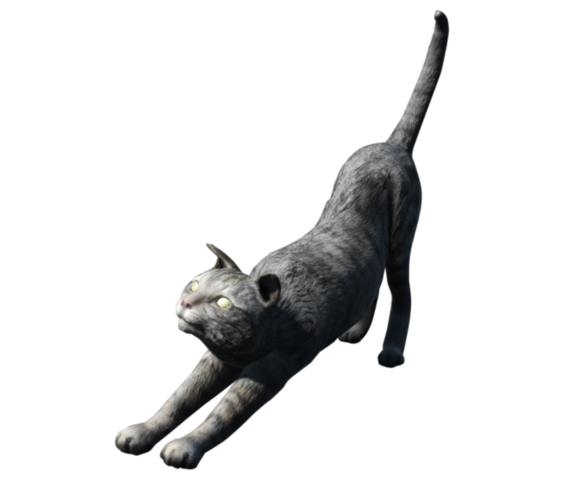 File:FO4 House Cat.png