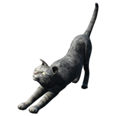 A typical house cat in <i>Fallout 4</i>
