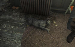 Fo4FH Tink