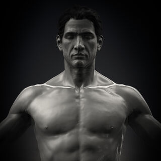 Nate naked render front view