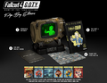Fallout 4 GOTY Pip Boy Edition.png