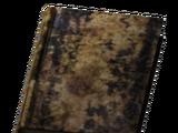 Journal (ruined store)