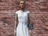 Laundered dress (Fallout 76)