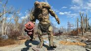 FO4 Super Mutant Ancient behemoth