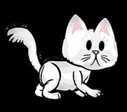 FOS Cat8
