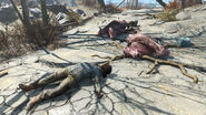 Fo4 Fred O'Connell corpse