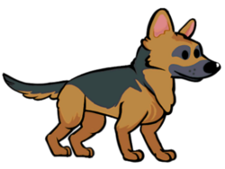 FOS Dog2