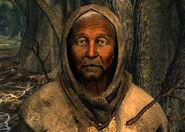 Leaf Mother Laurel