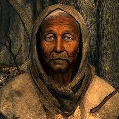 Мати-крона Береза