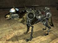 Rex cyberdog
