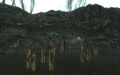Ruzka's Lair.jpg
